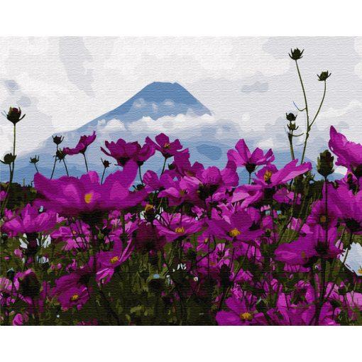 Virágok a Fuji árnyékában